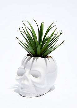 Mini Skull Potted Faux Succulent
