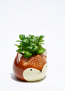 Mini Fox Potted Faux Succulent