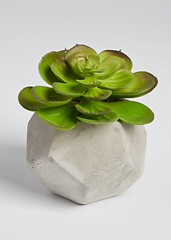 Faux Geo Clay Potted Succulent