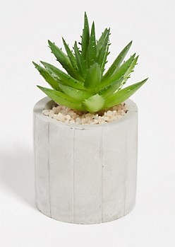 Green Faux Succulent Etched Clay Pot