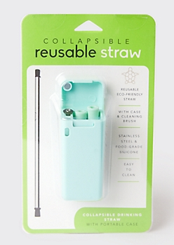 Mint Reusable Metal Straw